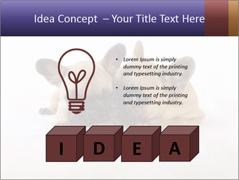 0000072079 PowerPoint Templates - Slide 80