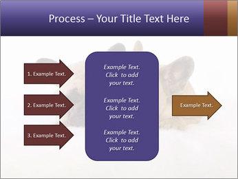 0000072079 PowerPoint Template - Slide 85