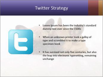 0000072079 PowerPoint Template - Slide 9