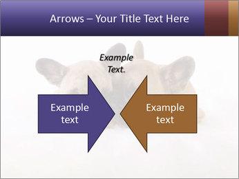 0000072079 PowerPoint Template - Slide 90
