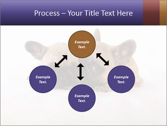 0000072079 PowerPoint Templates - Slide 91