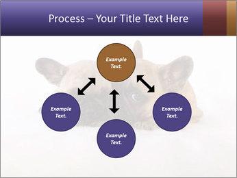 0000072079 PowerPoint Template - Slide 91