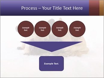 0000072079 PowerPoint Template - Slide 93