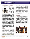 0000072079 Word Template - Page 3