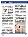 0000072083 Word Template - Page 3