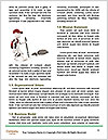 0000072087 Word Template - Page 4