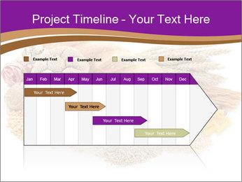 0000072102 PowerPoint Template - Slide 25