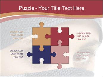 0000072108 PowerPoint Template - Slide 43