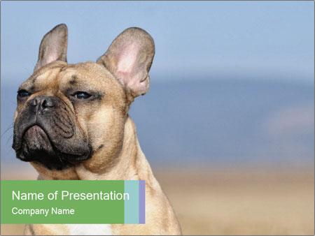 0000072118 PowerPoint Templates