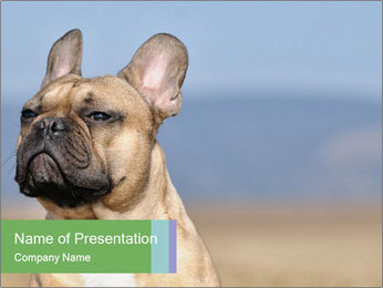 0000072118 PowerPoint Template - Slide 1