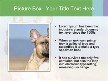 0000072118 PowerPoint Template - Slide 13