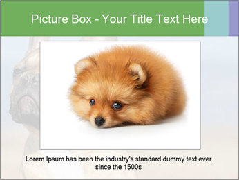 0000072118 PowerPoint Template - Slide 15