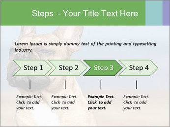 0000072118 PowerPoint Template - Slide 4
