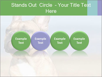 0000072118 PowerPoint Template - Slide 76