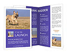 0000072119 Brochure Templates