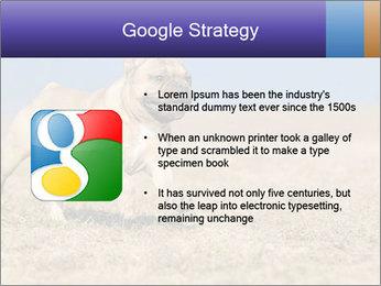 0000072119 PowerPoint Templates - Slide 10