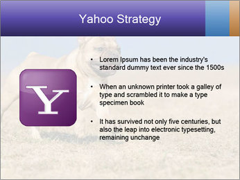 0000072119 PowerPoint Templates - Slide 11