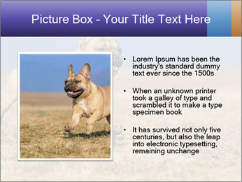 0000072119 PowerPoint Templates - Slide 13
