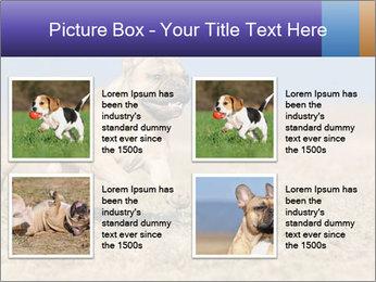 0000072119 PowerPoint Templates - Slide 14