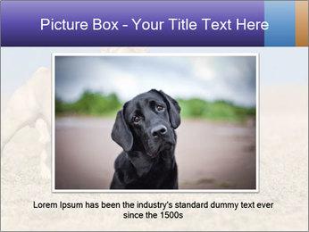 0000072119 PowerPoint Templates - Slide 15