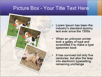0000072119 PowerPoint Templates - Slide 17