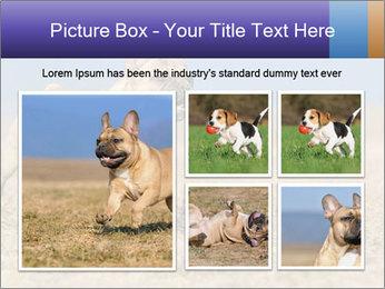 0000072119 PowerPoint Templates - Slide 19