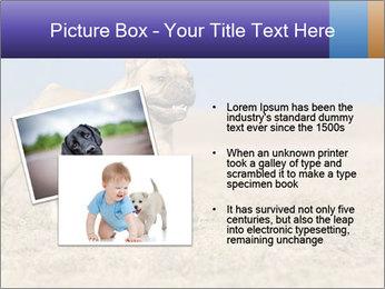 0000072119 PowerPoint Templates - Slide 20