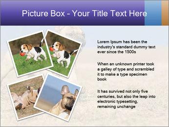 0000072119 PowerPoint Templates - Slide 23