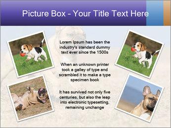 0000072119 PowerPoint Templates - Slide 24