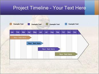 0000072119 PowerPoint Templates - Slide 25