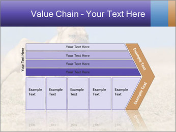 0000072119 PowerPoint Templates - Slide 27