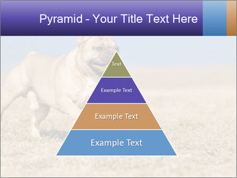 0000072119 PowerPoint Templates - Slide 30