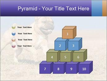 0000072119 PowerPoint Templates - Slide 31