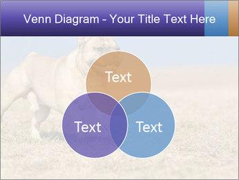0000072119 PowerPoint Templates - Slide 33