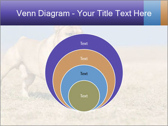 0000072119 PowerPoint Templates - Slide 34