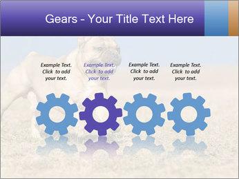 0000072119 PowerPoint Templates - Slide 48