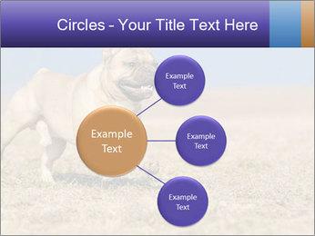 0000072119 PowerPoint Templates - Slide 79