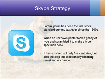 0000072119 PowerPoint Templates - Slide 8