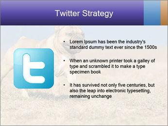 0000072119 PowerPoint Templates - Slide 9