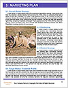 0000072119 Word Templates - Page 8