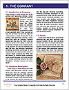 0000072122 Word Template - Page 3