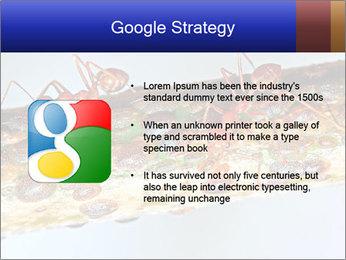 0000072127 PowerPoint Templates - Slide 10