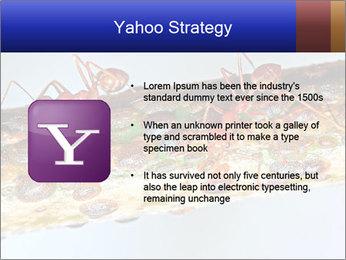 0000072127 PowerPoint Templates - Slide 11