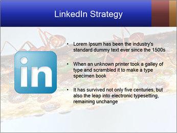 0000072127 PowerPoint Templates - Slide 12