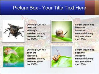 0000072127 PowerPoint Template - Slide 14