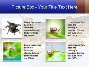 0000072127 PowerPoint Templates - Slide 14
