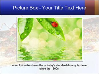 0000072127 PowerPoint Templates - Slide 15