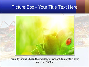 0000072127 PowerPoint Template - Slide 16
