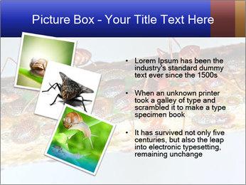 0000072127 PowerPoint Templates - Slide 17