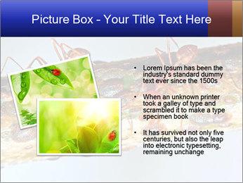 0000072127 PowerPoint Templates - Slide 20